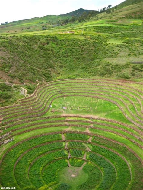 Visually Stunning Agricultural Terraces - XciteFun
