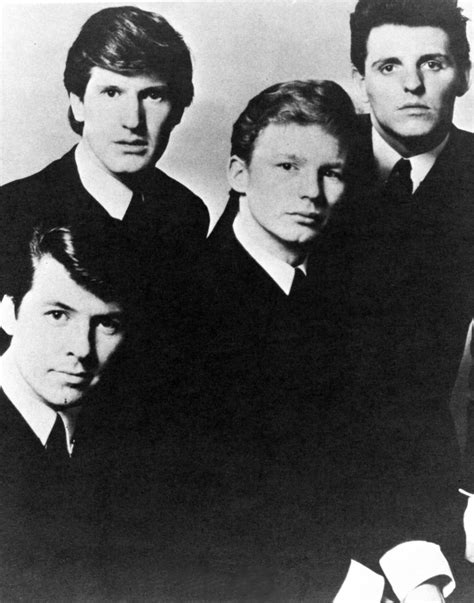 The Searchers on Spotify