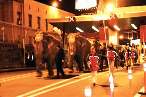 Ringling Circus Plans NYC Elephant Dance - Earth in Transition